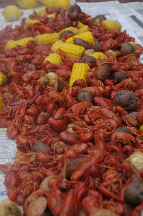 Ft Morgan crawfish